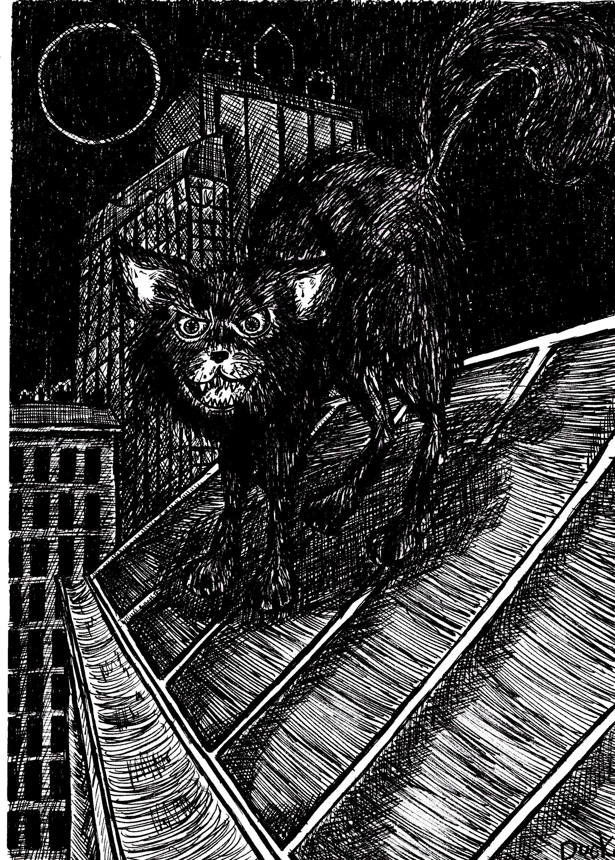Un chat dans la nuit (Duck)