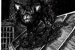 Grabouillon : Un chat dans la nuit ( par Duck)